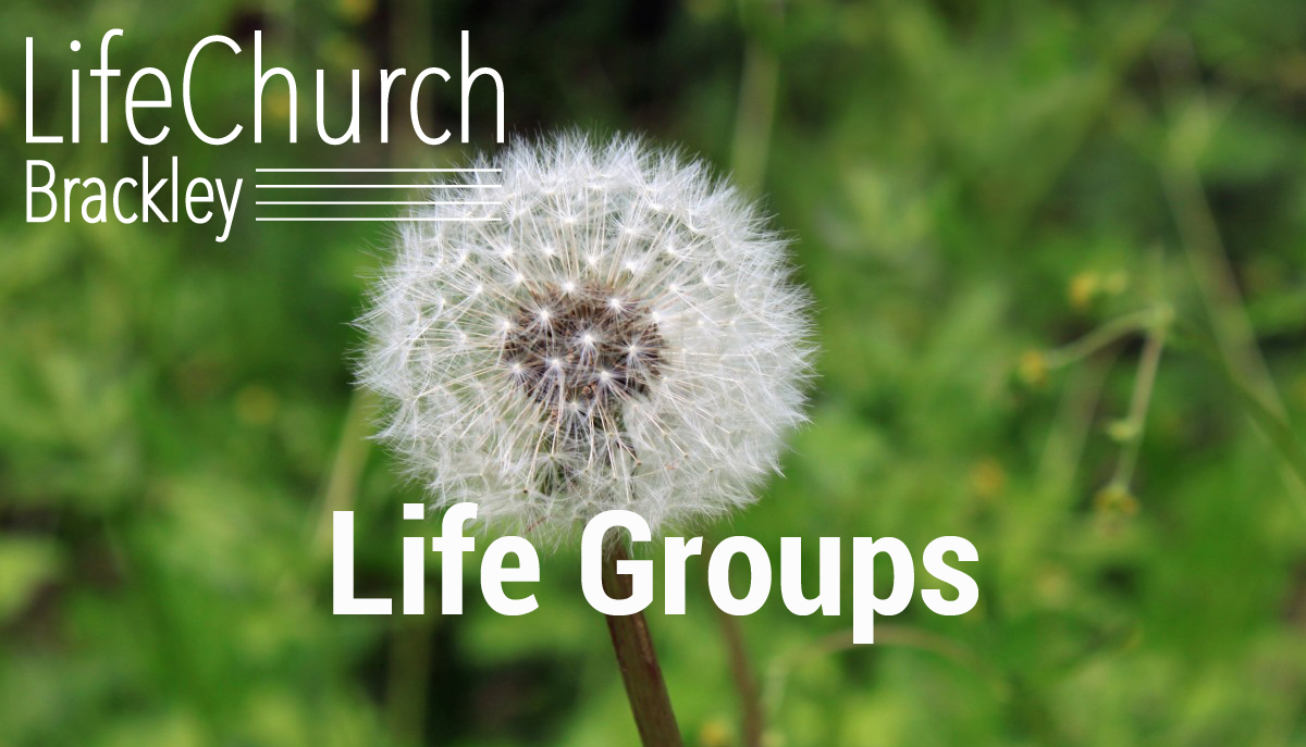 Lifegroups banner